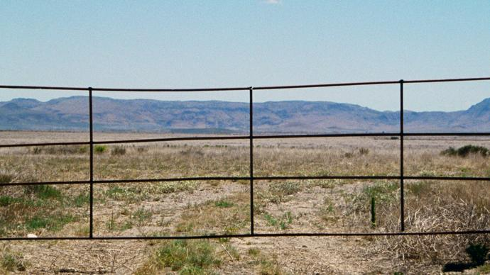 photo of some gate in the desert