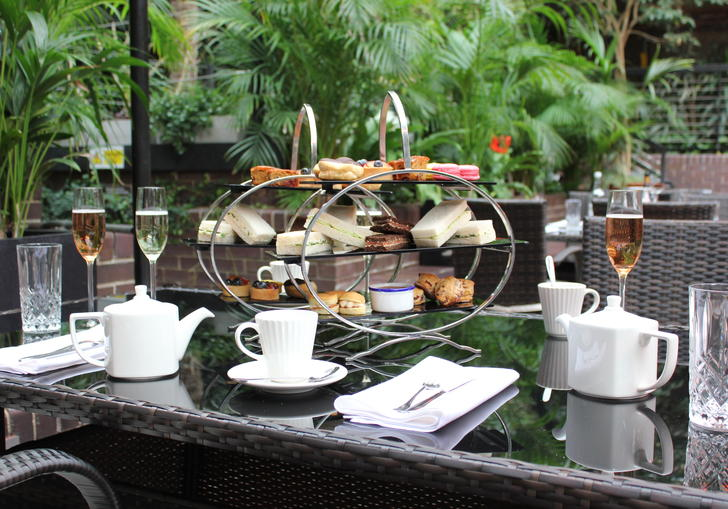 Photo of selection of cakes and sandwiches in the Barbican Conservatory Afternoon Tea