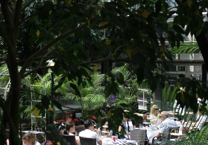 Image of Afternoon Tea in the Barbican Conservatory