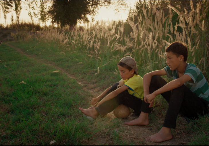 two kids sitting in a field with long grass behind them