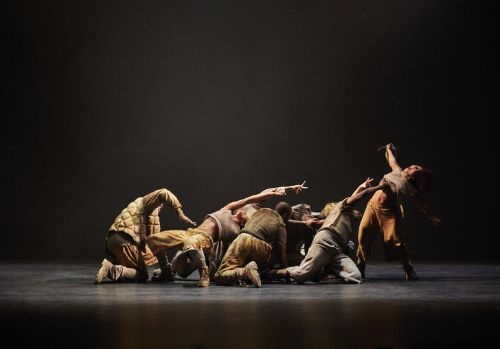 Image of a group of dancers in various positions. Most of them are crouched and reaching towards a dancer at the far right who is upright. All the dancers are in brownish and/ or grey clothing