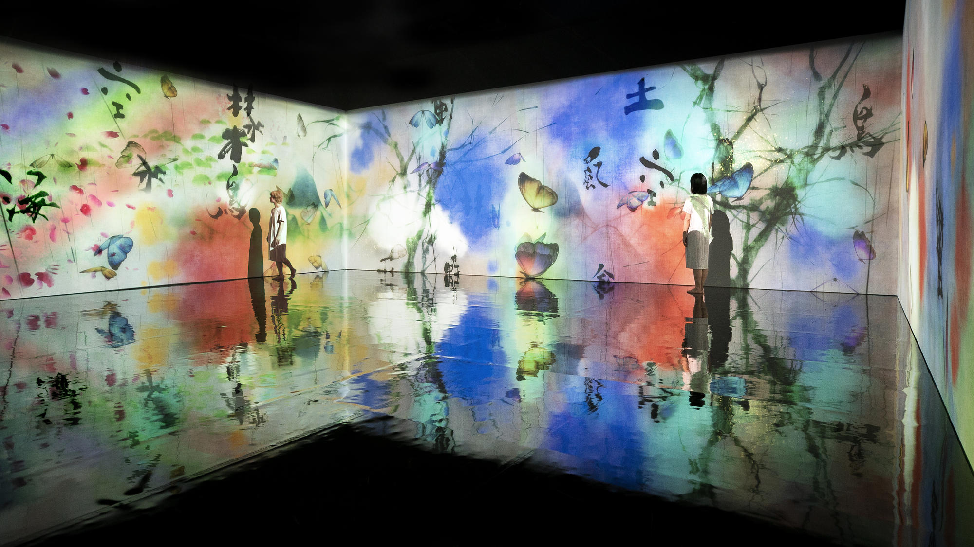 Installation view: AI: More Than Human, 2021, World Museum, Liverpool, UK