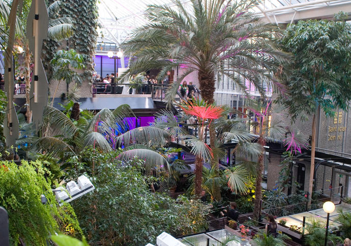 Photo of the Barbican Conservatory decorated during an event