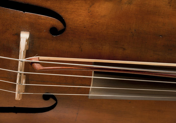 Photo of close up on cello