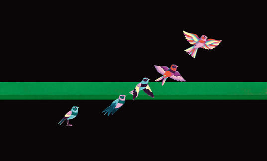 Artwork showing five multi-coloured swallows flying over a black and green background.